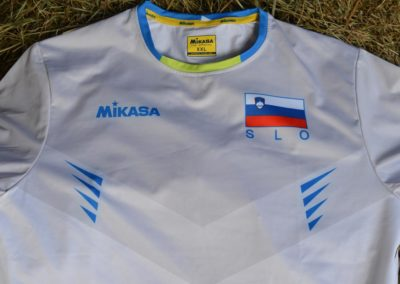 2017drazba1