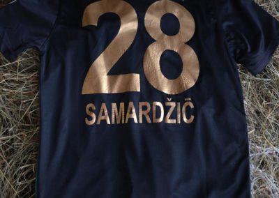 2017drazba15