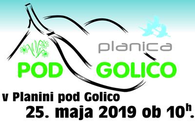 Planica pod Golico 2019