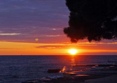Morska romantika, Pinea 2017
